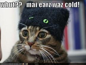 whut??   mai earz waz cold!
