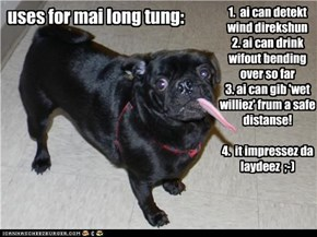 uses for mai long tung: