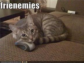 frienemies