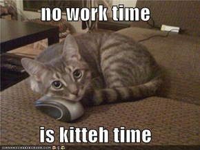 no work time  is kitteh time