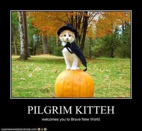 PILGRIM KITTEH