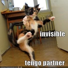 invisible tengo partner