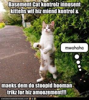 Basement Cat kontrolz innosent kittehs wif hiz miend kontrol &