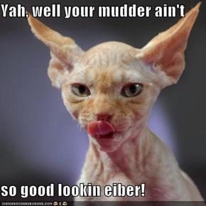 Yah, well your mudder ain't  so good lookin eiber!