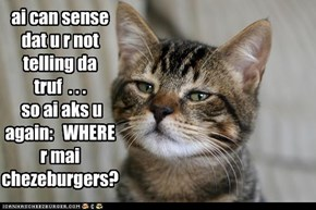 ai can sense dat u r not telling da truf  . . .  so ai aks u again:   WHERE  r mai chezeburgers?