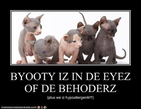 BYOOTY IZ IN DE EYEZ OF DE BEHODERZ