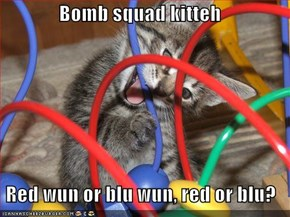 Bomb squad kitteh  Red wun or blu wun, red or blu?