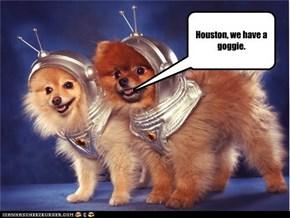 Houston, we have a goggie.