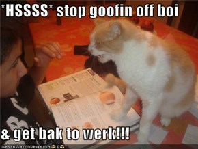 *HSSSS* stop goofin off boi  & get bak to werk!!!