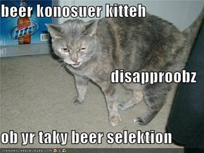 beer konosuer kitteh disapproobz ob yr taky beer selektion