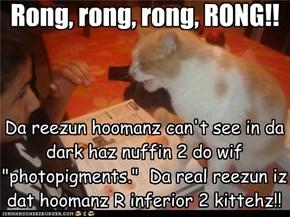 Rong, rong, rong, RONG!!