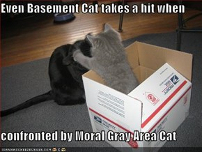 Even Basement Cat takes a hit when  confronted by Moral Gray Area Cat