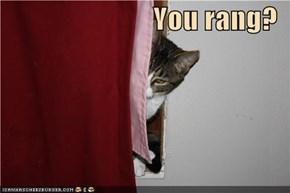 You rang?
