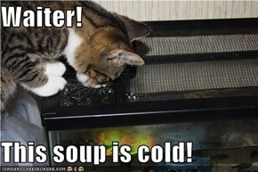 Waiter!  This soup is cold!