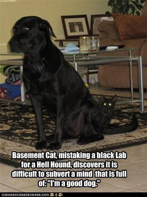 "Basement Cat, mistaking a black Lab for a Hell Hound, discovers it is difficult to subvert a mind  that is full of: ""I'm a good dog."""