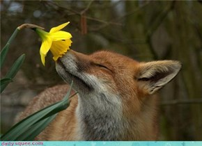 Stop and smell the flowers!