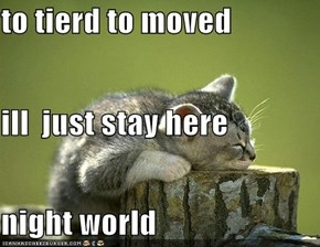 to tierd to moved ill  just stay here night world