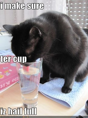 i make sure ter cup iz hail full