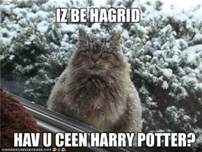 IZ BE HAGRID