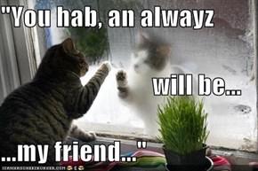 """You hab, an alwayz                               will be... ...my friend..."""