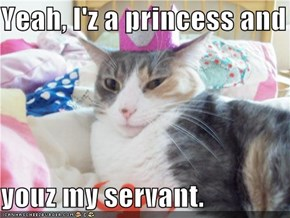 Yeah, I'z a princess and  youz my servant.