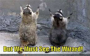 But We Must See The Wizard!