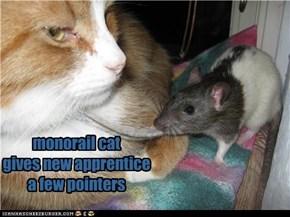 monorail cat trains apprentice