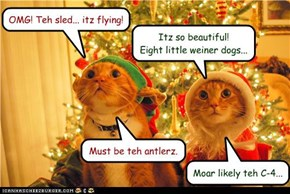 OMG. Teh sled... itz flying!