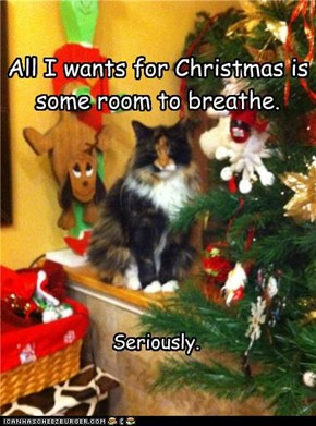 All I wants for Christmas is some room to breathe.