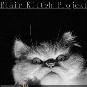 Blair Kitteh Projekt.