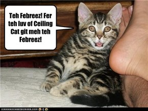 Teh Febreez! Fer teh luv of Ceiling Cat git meh teh Febreez!