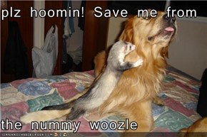 plz hoomin! Save me from  the nummy woozle