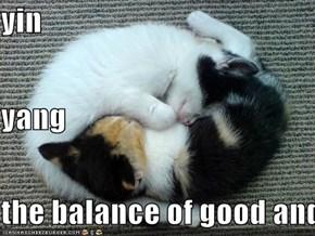 yin yang the balance of good and evil