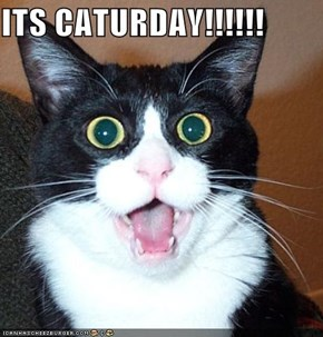 ITS CATURDAY!!!!!!