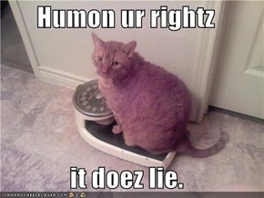 Humon ur rightz  it doez lie.