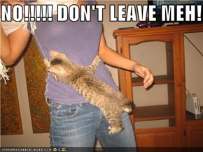 NO!!!!! DON'T LEAVE MEH!!!