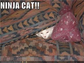 NINJA CAT!!