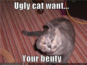 Ugly cat want...  Your beuty