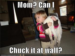 Mom? Can I  Chuck it at wall?