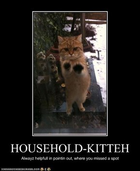 HOUSEHOLD-KITTEH