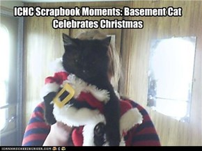 ICHC Scrapbook Moments: Basement Cat Celebrates Christmas