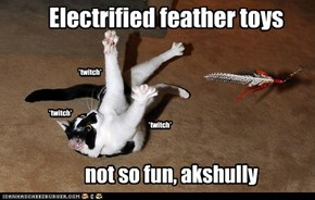 Electrified feather toys