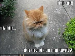 hai kat!! aiz hiir... duz uze pik up mai tawts?