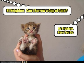 Can I Borrow a Cup of Cute?