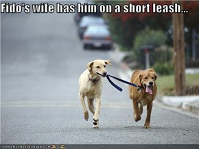 Fido's wife has him on a short leash...