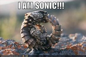 I AM SONIC!!!