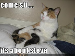 come sit....  its about steve