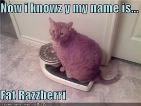 Now i knowz y my name is...  Fat Razzberri