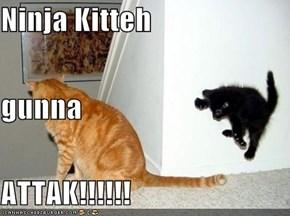 Ninja Kitteh gunna ATTAK!!!!!!