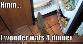 Hmm...  I wonder wats 4 dinner